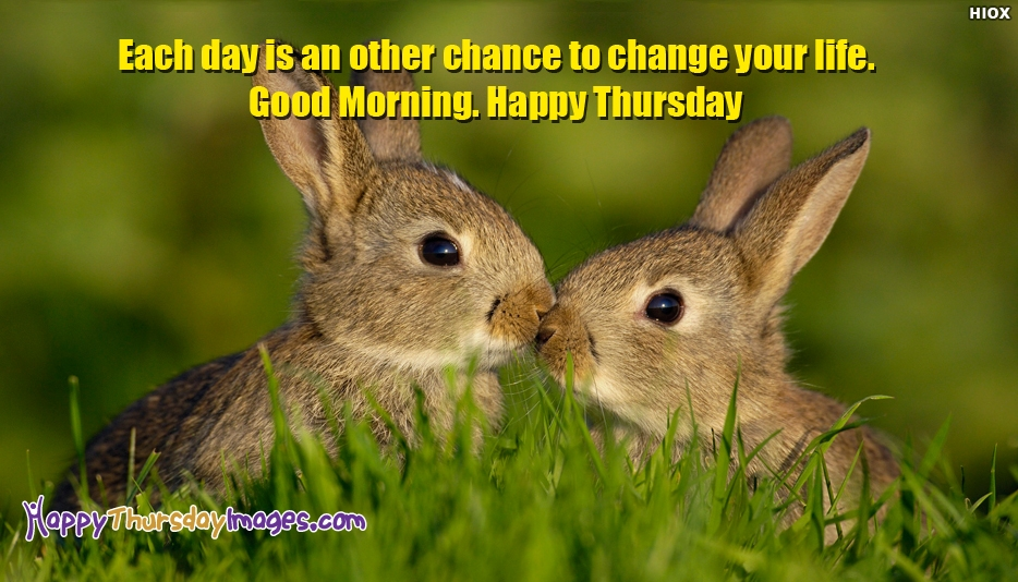 Happy Thursday Images With Motivational Quotes