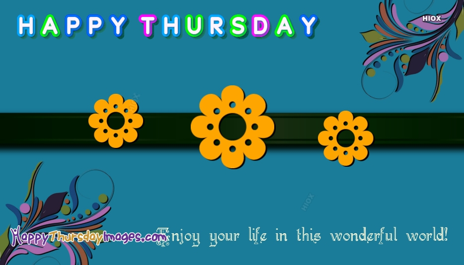 Enjoy Your Life In This Wonderful World. Happy Thursday