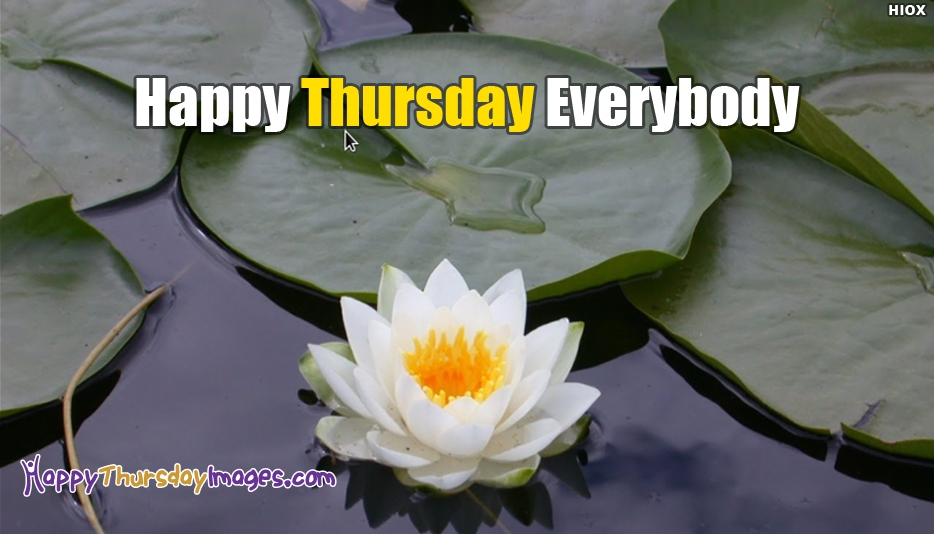 Happy Thursday Everybody - Happy Thursday Images for Everyone