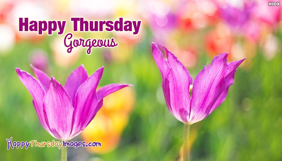 Happy Thursday Gorgeous - Happy Thursday Images for Girlfriend