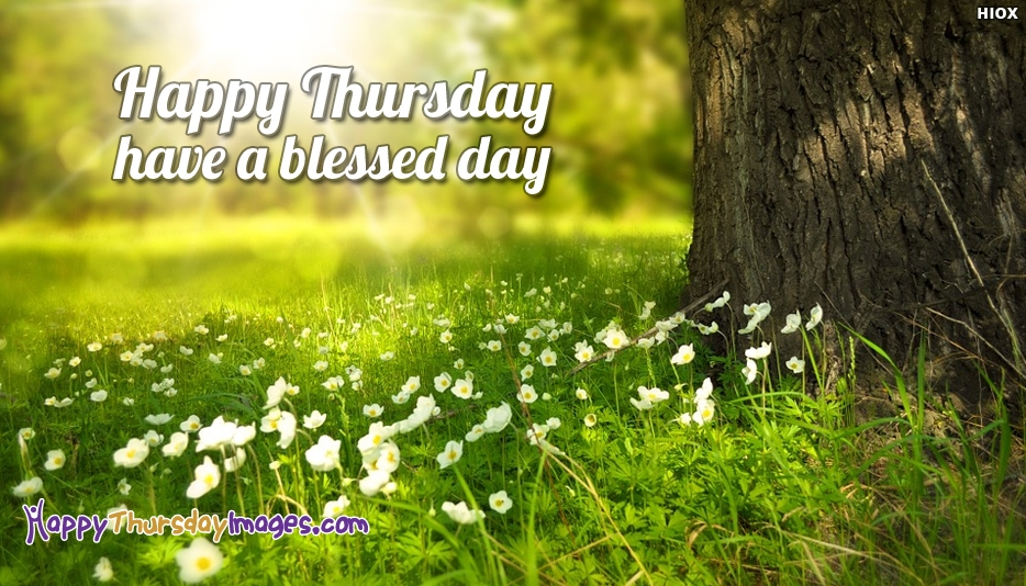 Happy Thursday Have A Blessed Day - Happy Thursday Images for Whatsapp Dp