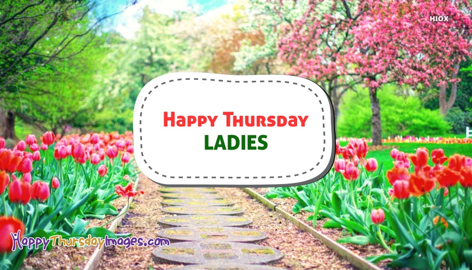 Happy Thursday Ladies Image