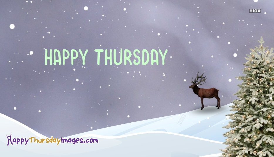 Happy Thursday With Snow