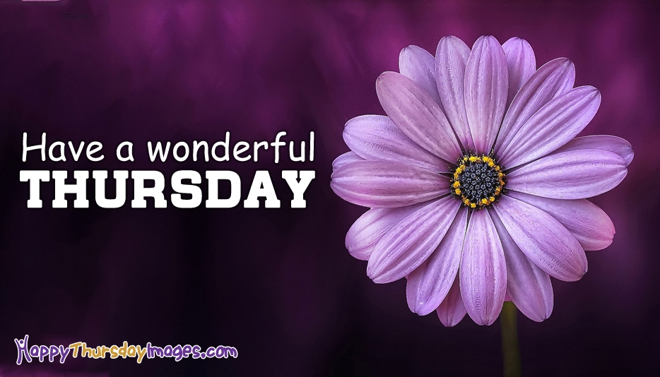 Have a Wonderful Thursday @ HappyThursdayImages.com
