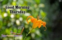 Good Morning Thursday Wishes