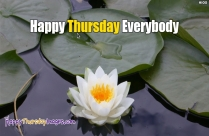 Happy Thursday God Bless You