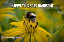 Happy Thursday Handsome