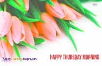 Good Morning Thursday Love. Have A Wonderful Day