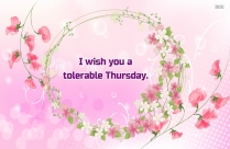 Tolerable Thursday.