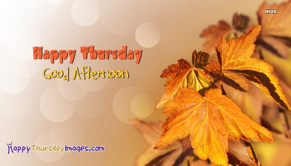 Good Afternoon Thursday Images