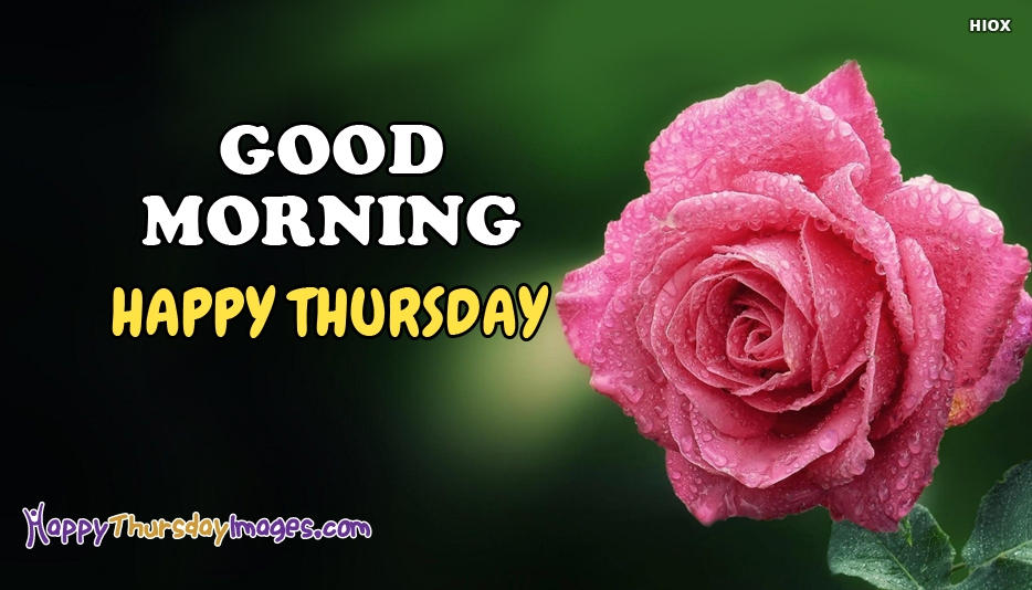 Good Morning Thursday Image : New thursday morning pics for whatsapp facebook
